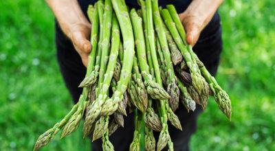 7 motivos para comer mais aspargos
