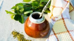 Erva-mate: 8 benefícios dessa planta para a saúde do corpo e da mente