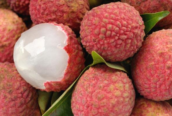 Lichia: conheça os benefícios dessa fruta exótica