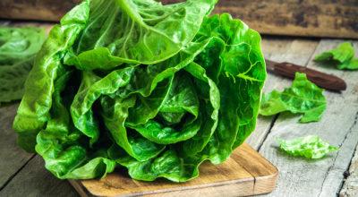 Alface: 5 benefícios do vegetal que é baixo em calorias e rico em nutrientes