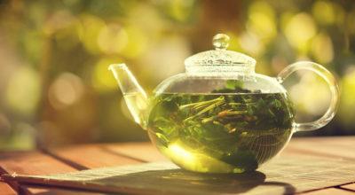 Chá de boldo faz bem para o fígado? Descubra os benefícios