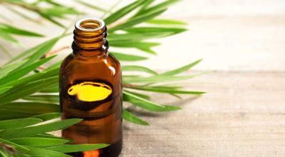 Óleo de melaleuca pode ser usado contra acne? Descubra benefícios