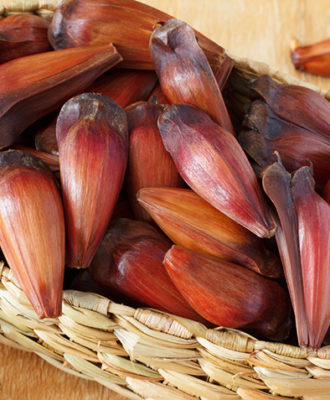 Pinhão: conheça todo o poder dessa semente tipicamente sulista