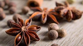Anis-estrelado: conheça os benefícios e como usar essa especiaria