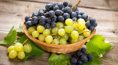 Benefícios da uva: 10 motivos para comer essa fruta que é pura saúde