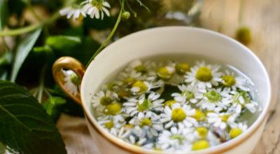 Chá de Camomila: benefícios que vão além da ação calmante