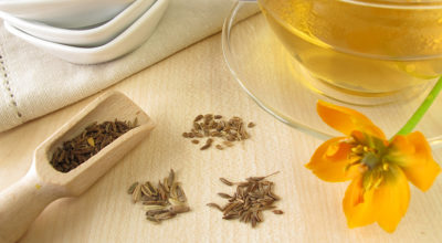 Chá de erva-doce: mais do que um simples calmante natural