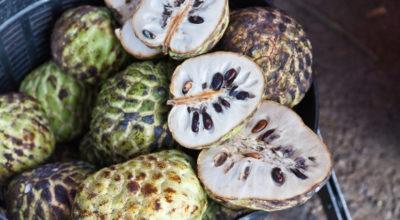 Graviola: conheça 6 benefícios dessa fruta tropical saborosa